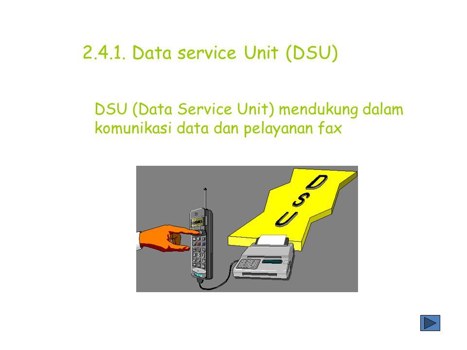 2.4.1. Data service Unit (DSU)