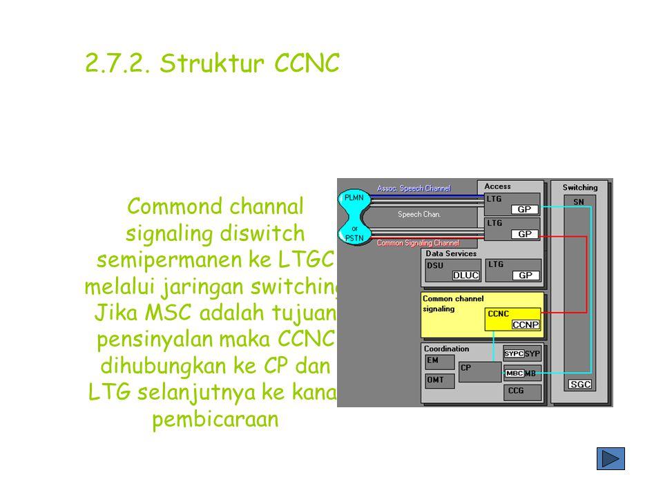 2.7.2. Struktur CCNC