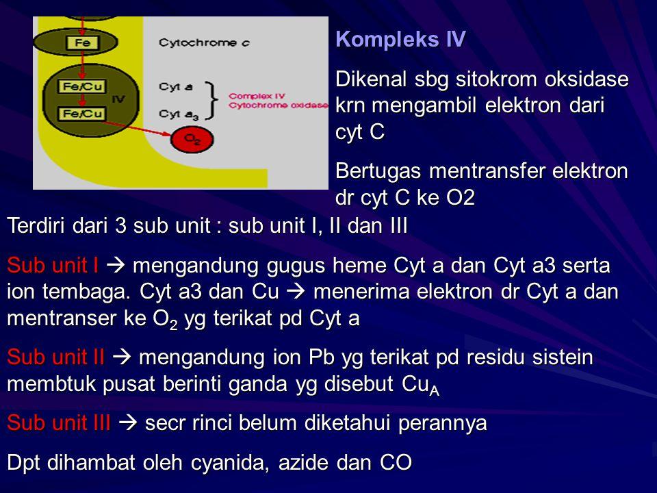 Kompleks IV Dikenal sbg sitokrom oksidase krn mengambil elektron dari cyt C. Bertugas mentransfer elektron dr cyt C ke O2.