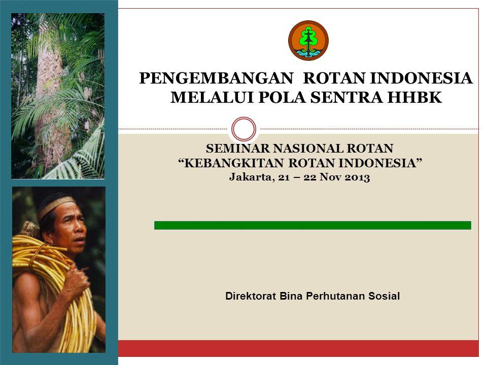 PENGEMBANGAN ROTAN INDONESIA MELALUI POLA SENTRA HHBK