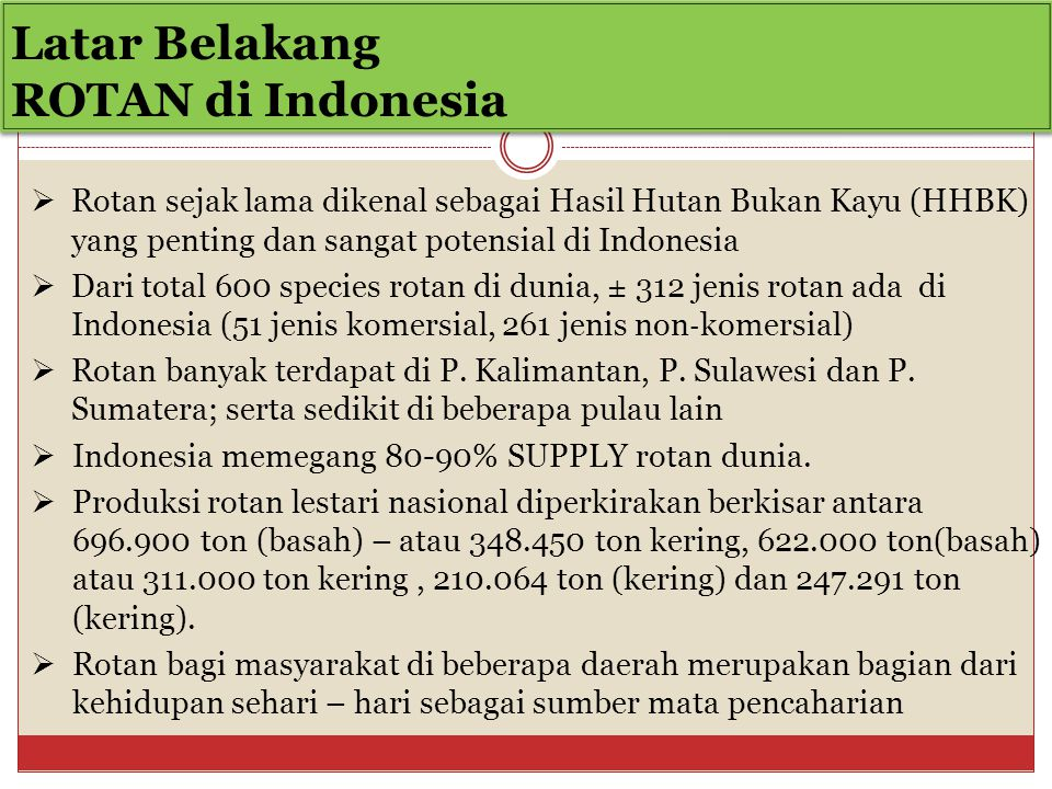 Latar Belakang ROTAN di Indonesia