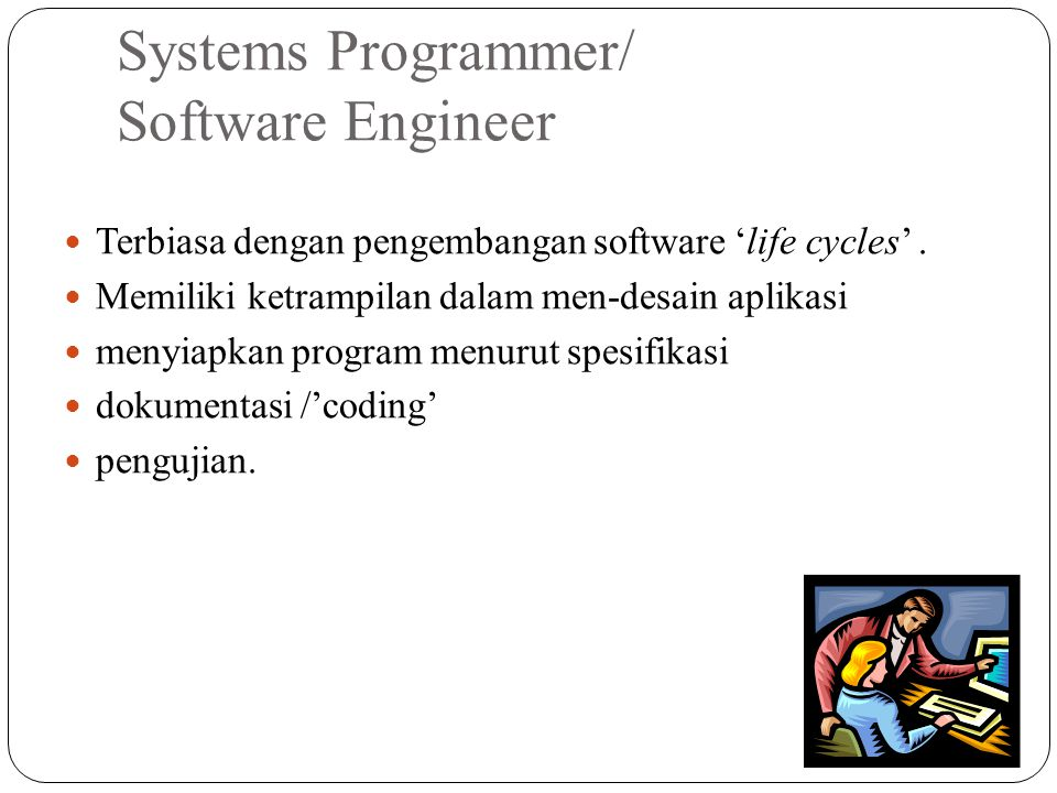 Systems Programmer/ Software Engineer