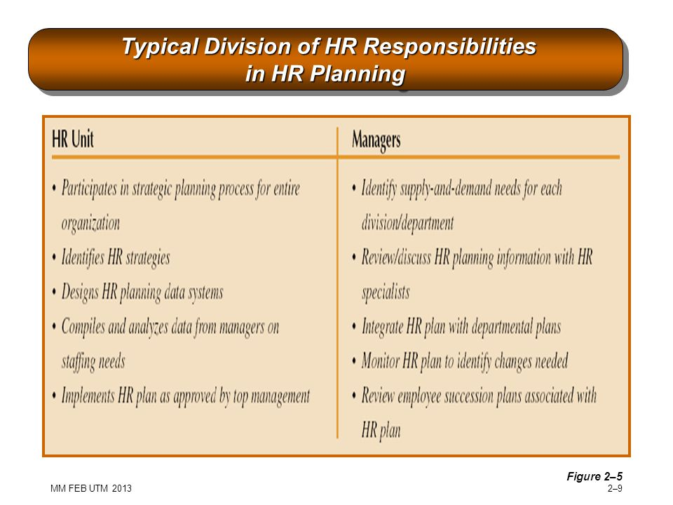 Typical Division of HR Responsibilities in HR Planning