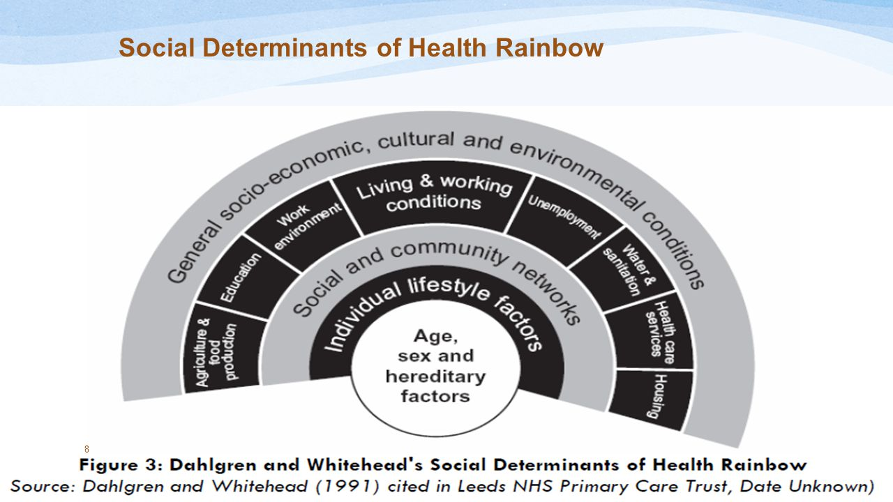 Social Determinants of Health Rainbow