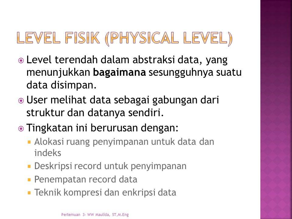 Level Fisik (Physical level)