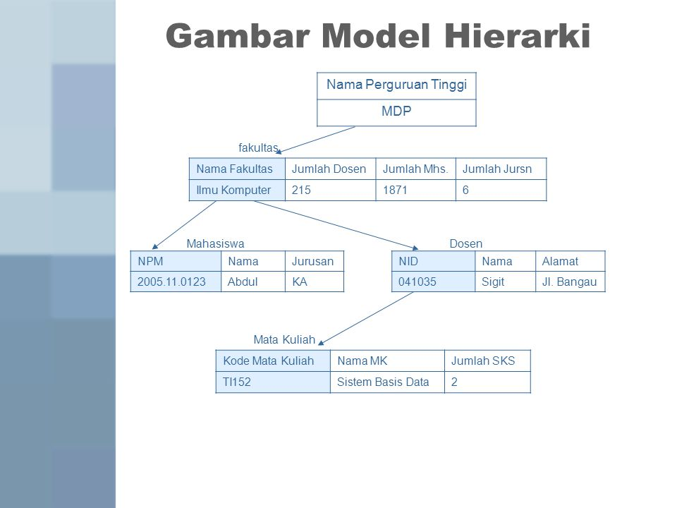 Gambar Model Hierarki Nama Perguruan Tinggi MDP fakultas Nama Fakultas