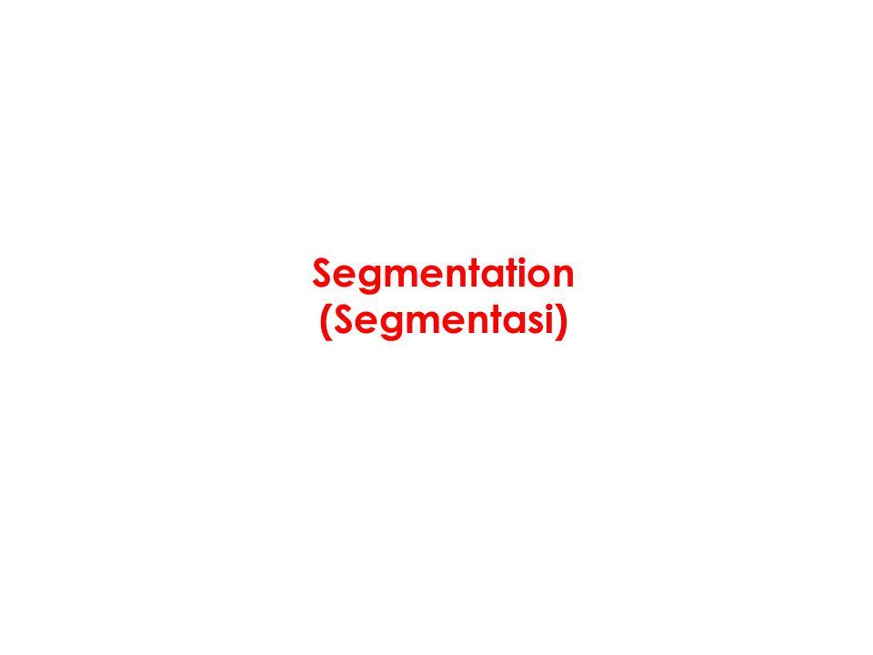 Segmentation (Segmentasi)