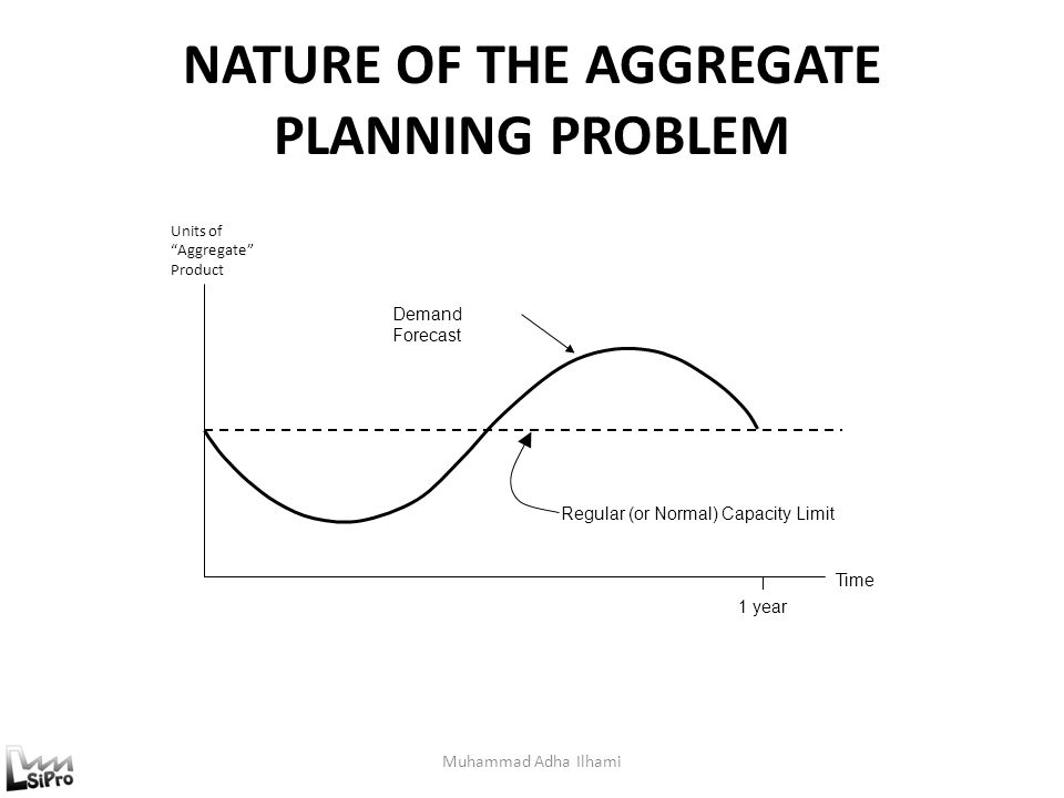 NATURE OF THE AGGREGATE PLANNING PROBLEM