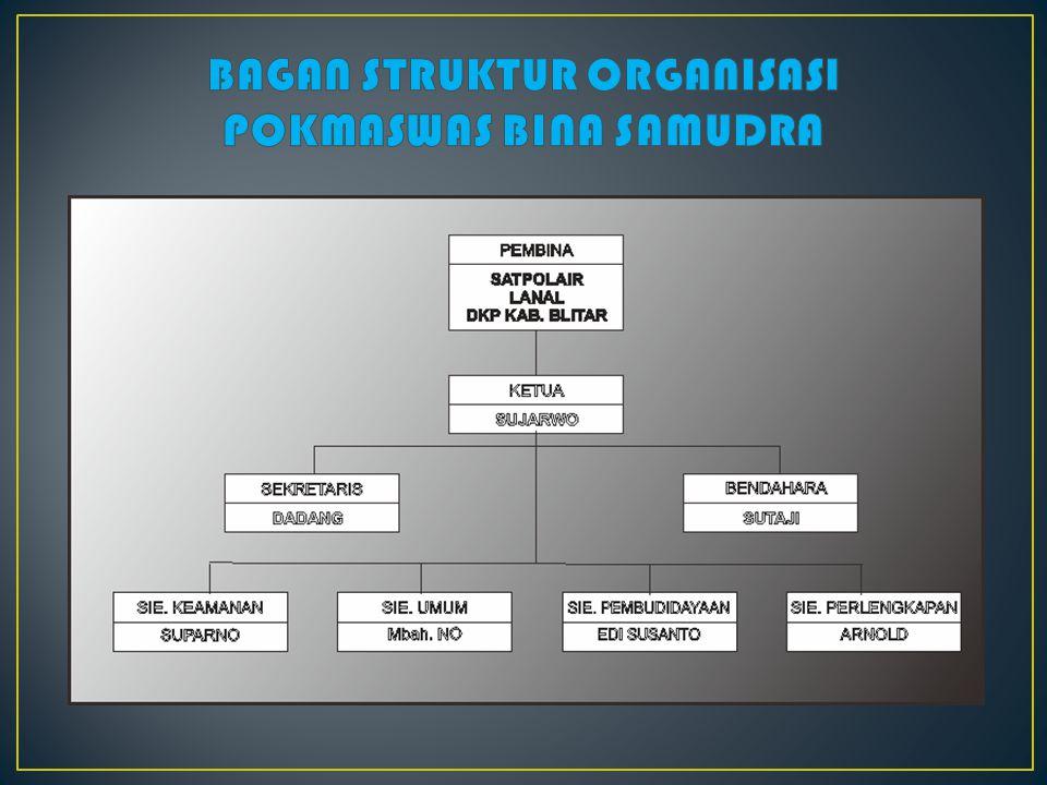 BAGAN STRUKTUR ORGANISASI POKMASWAS BINA SAMUDRA