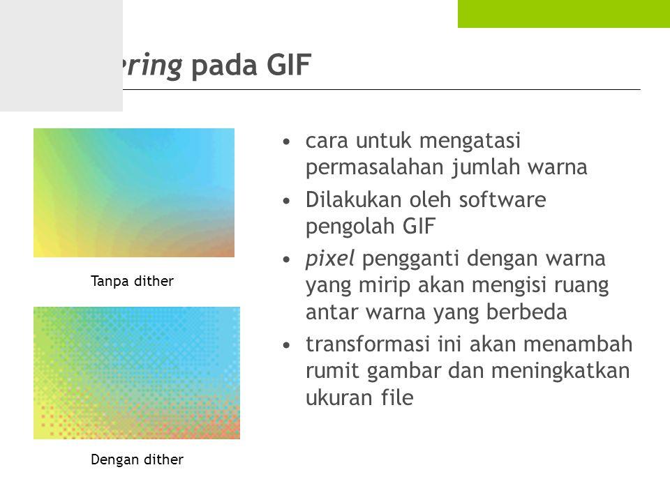 Dithering pada GIF cara untuk mengatasi permasalahan jumlah warna