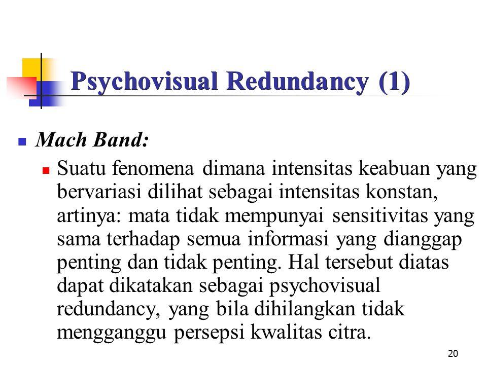 Psychovisual Redundancy (1)