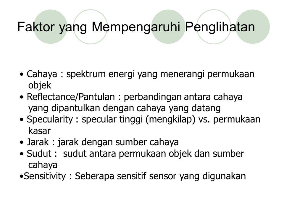 Faktor yang Mempengaruhi Penglihatan