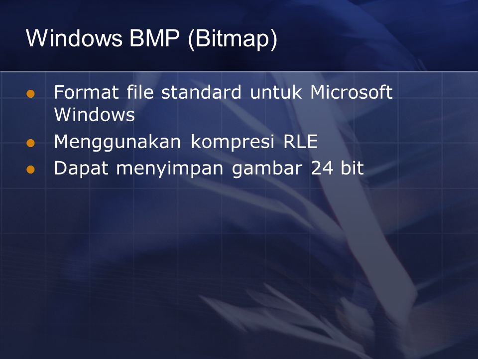 Windows BMP (Bitmap) Format file standard untuk Microsoft Windows