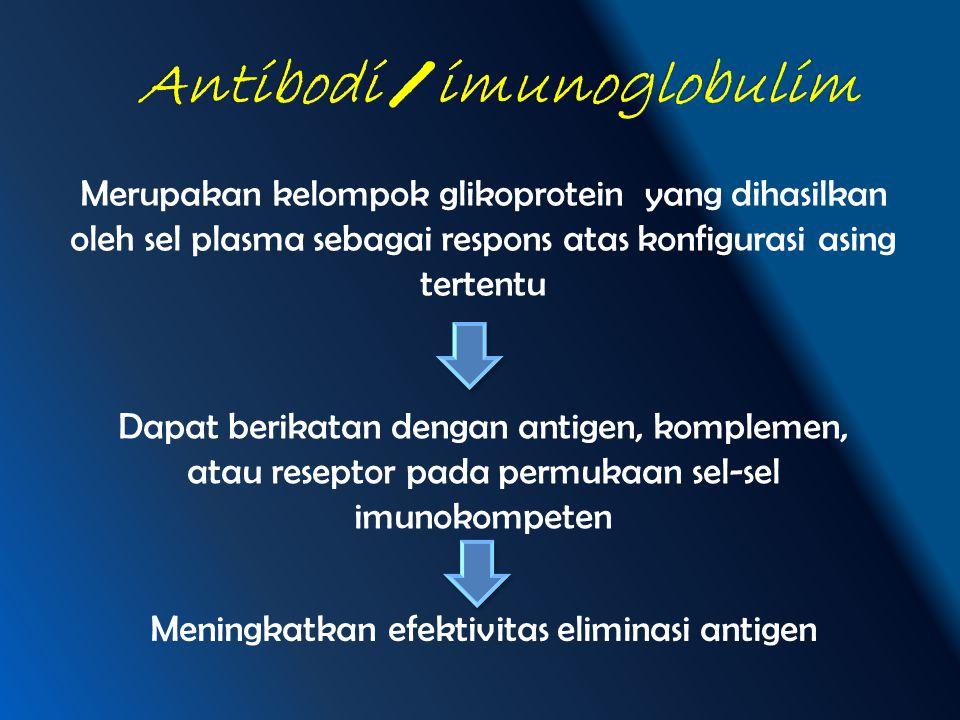 Antibodi / imunoglobulim