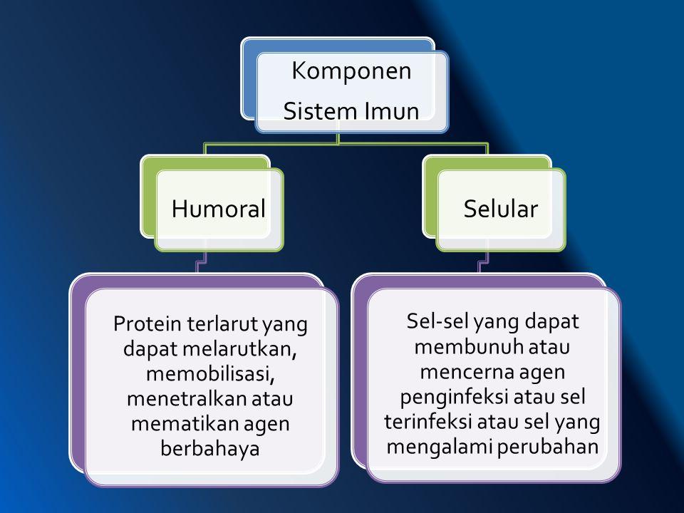 Komponen Sistem Imun Humoral Selular