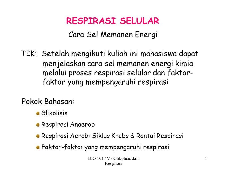 Cara Sel Memanen Energi