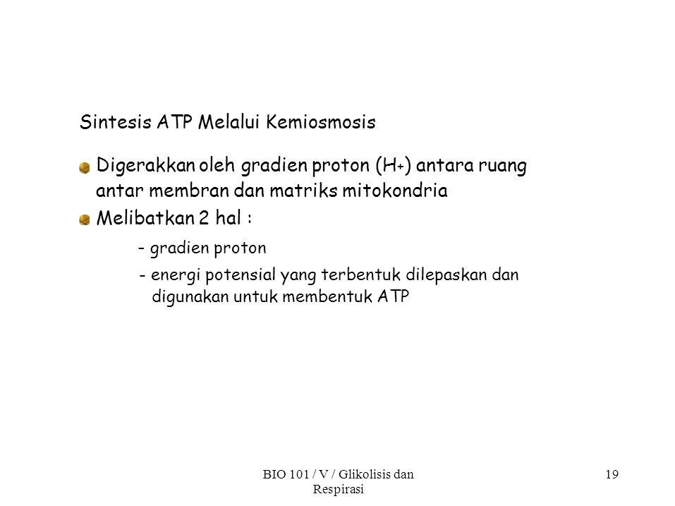 Sintesis ATP Melalui Kemiosmosis