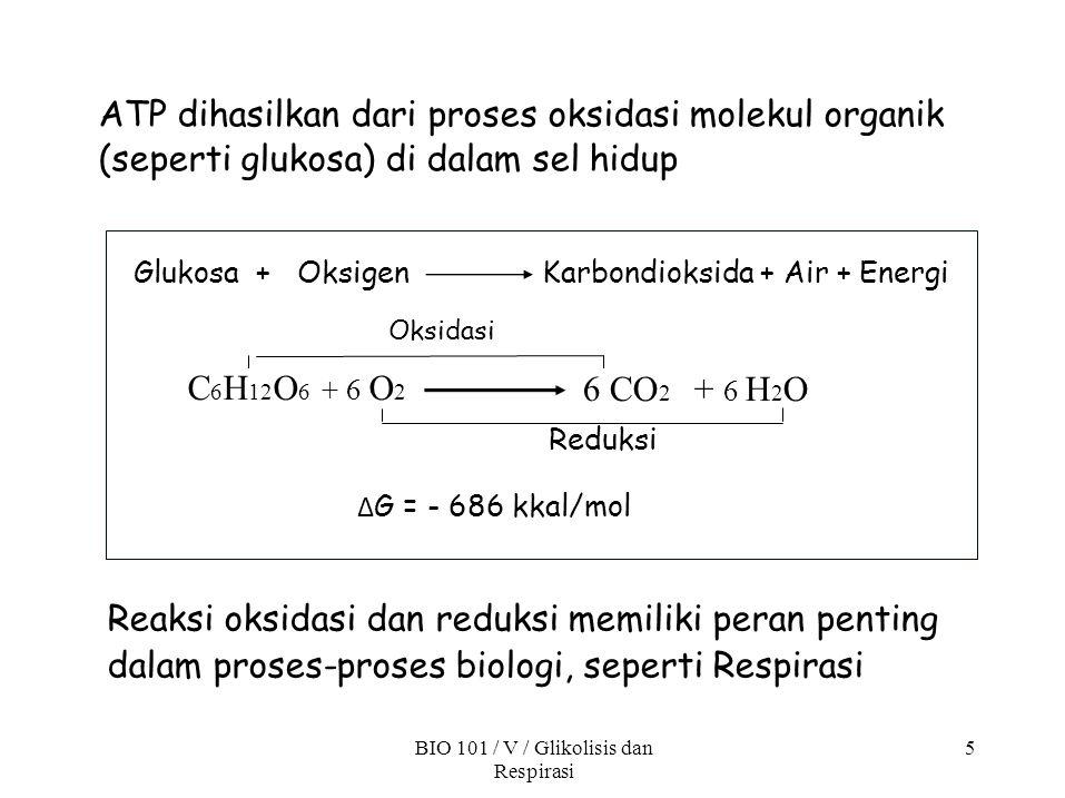 ATP dihasilkan dari proses oksidasi molekul organik