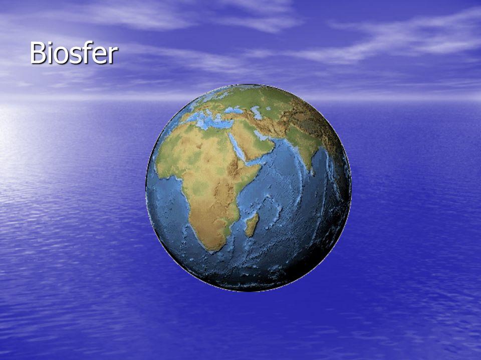 Biosfer