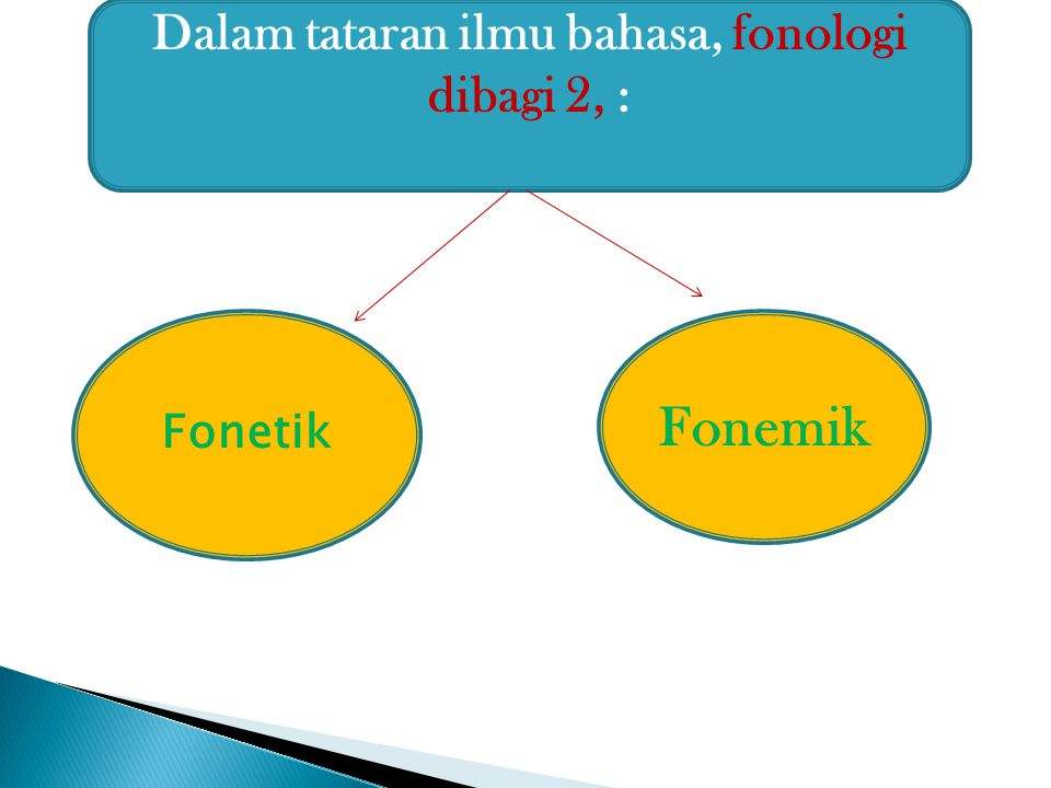 Dalam tataran ilmu bahasa, fonologi dibagi 2, :