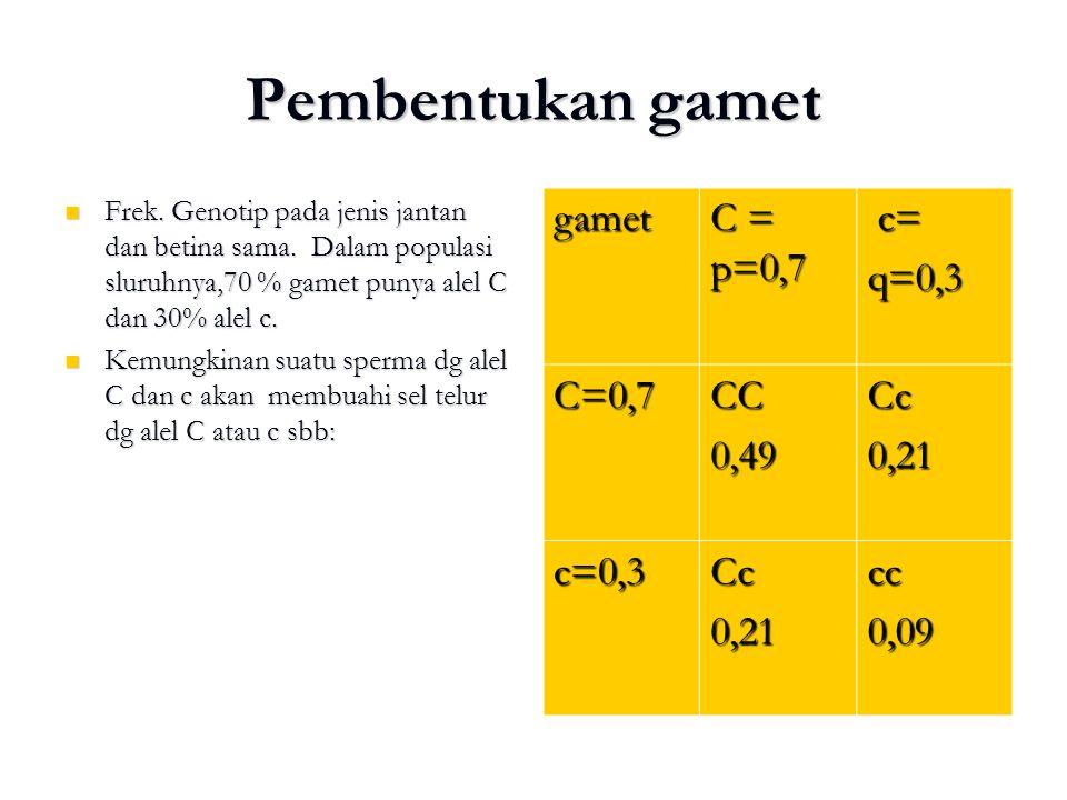 Pembentukan gamet gamet C = p=0,7 c= q=0,3 C=0,7 CC 0,49 Cc 0,21 c=0,3