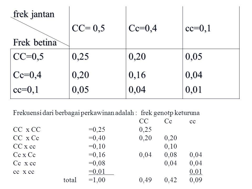 frek jantan Frek betina CC= 0,5 Cc=0,4 cc=0,1 CC=0,5 0,25 0,20 0,05