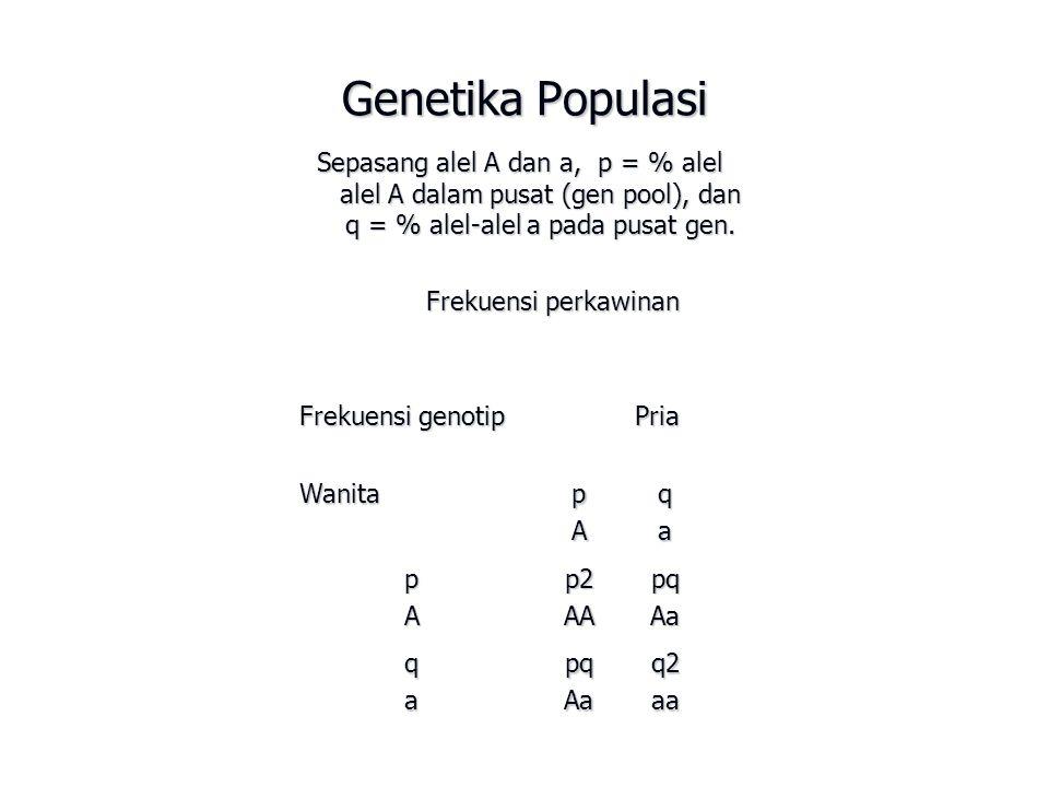 Genetika Populasi Sepasang alel A dan a, p = % alel alel A dalam pusat (gen pool), dan q = % alel-alel a pada pusat gen.