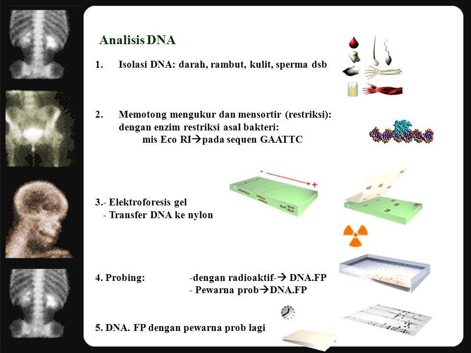 Analisis DNA Isolasi DNA: darah, rambut, kulit, sperma dsb
