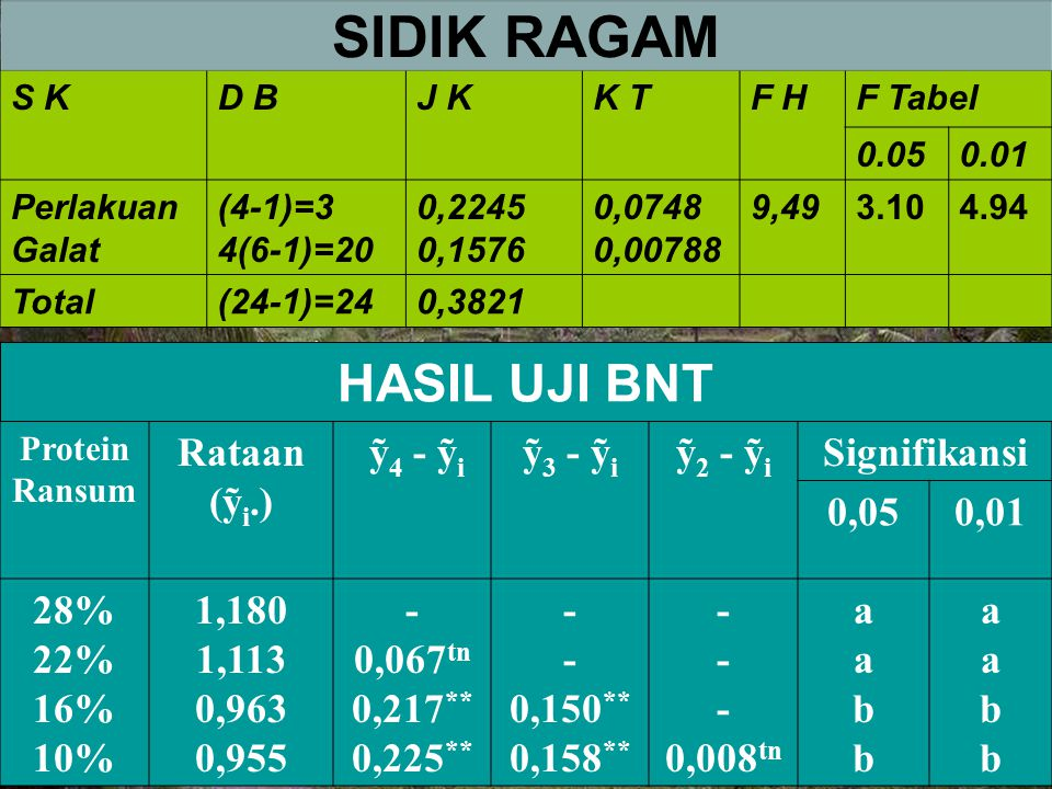 SIDIK RAGAM HASIL UJI BNT Rataan (ỹi.) ỹ4 - ỹi ỹ3 - ỹi ỹ2 - ỹi