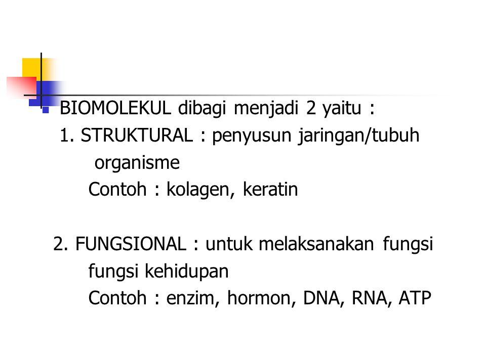 BIOMOLEKUL dibagi menjadi 2 yaitu :