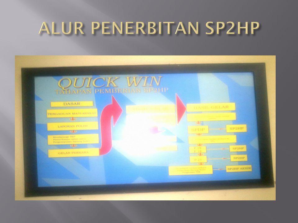 ALUR PENERBITAN SP2HP