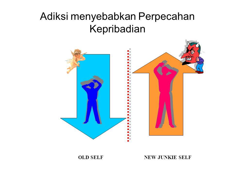 Adiksi menyebabkan Perpecahan Kepribadian