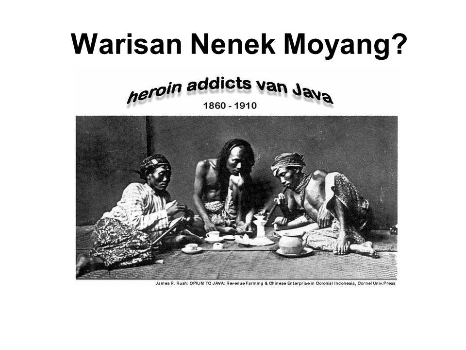Warisan Nenek Moyang Indonesia: Pengolah Opium, Eksportir koka