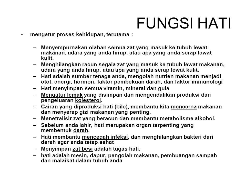FUNGSI HATI mengatur proses kehidupan, terutama :