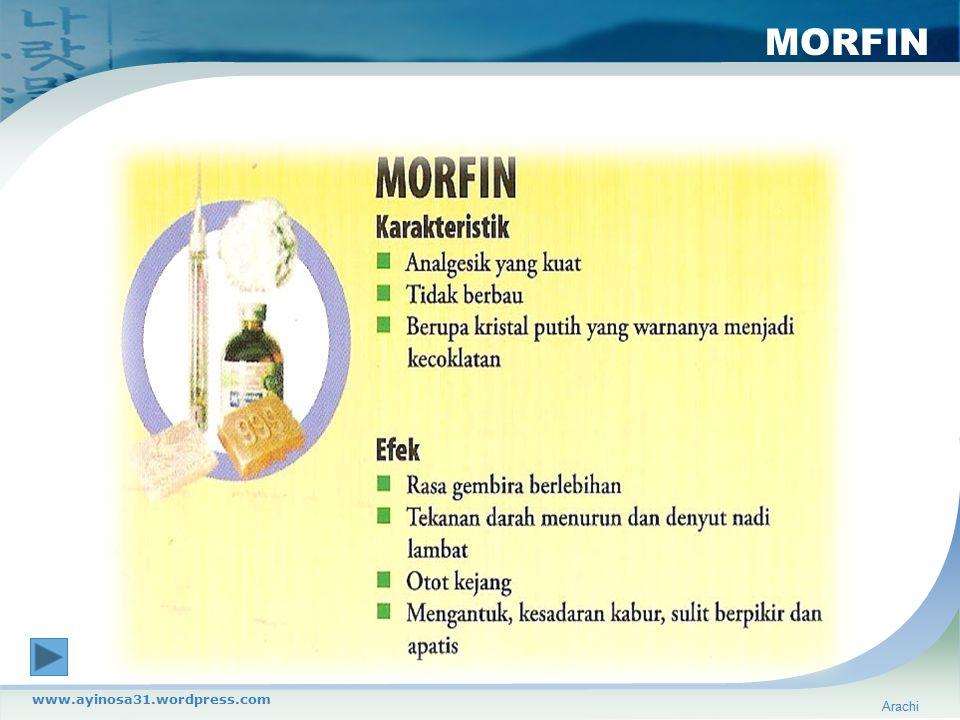 MORFIN www.ayinosa31.wordpress.com Arachi