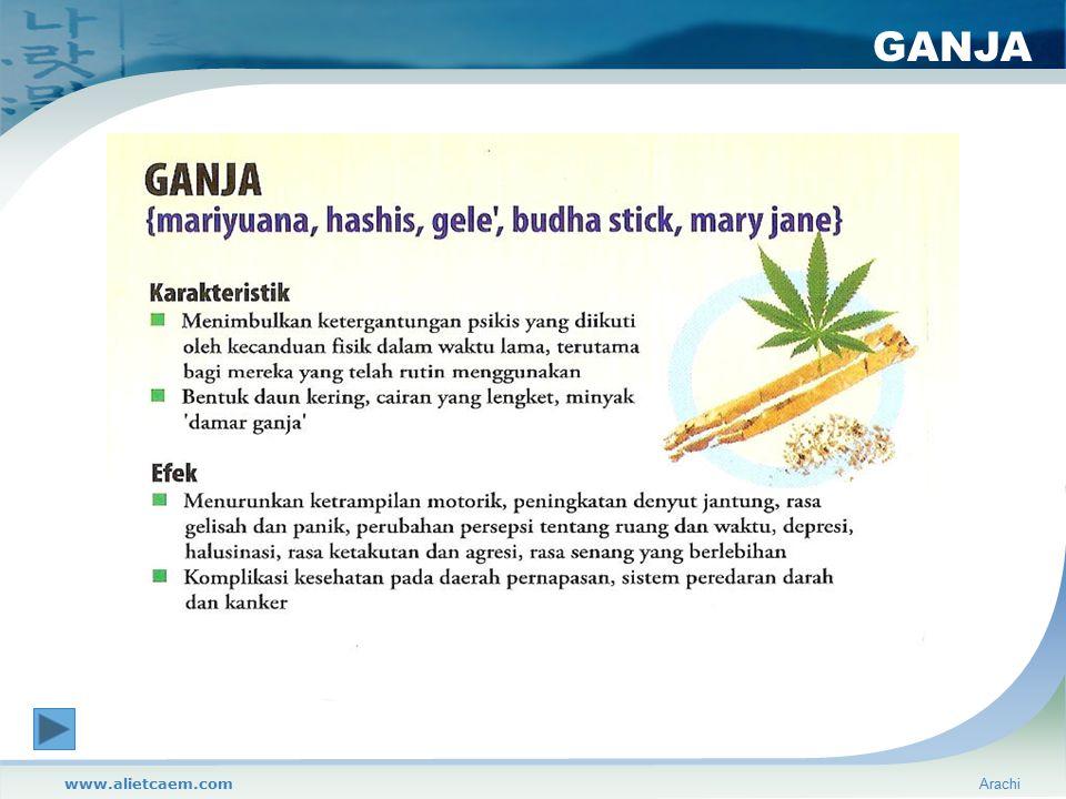 GANJA www.alietcaem.com Arachi
