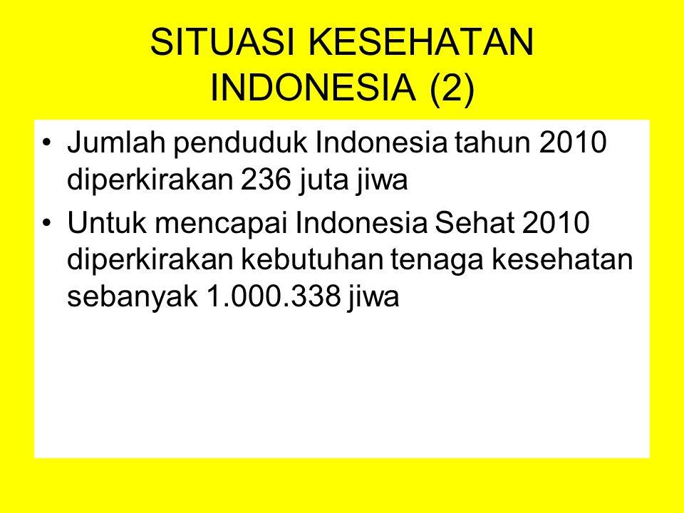 SITUASI KESEHATAN INDONESIA (2)