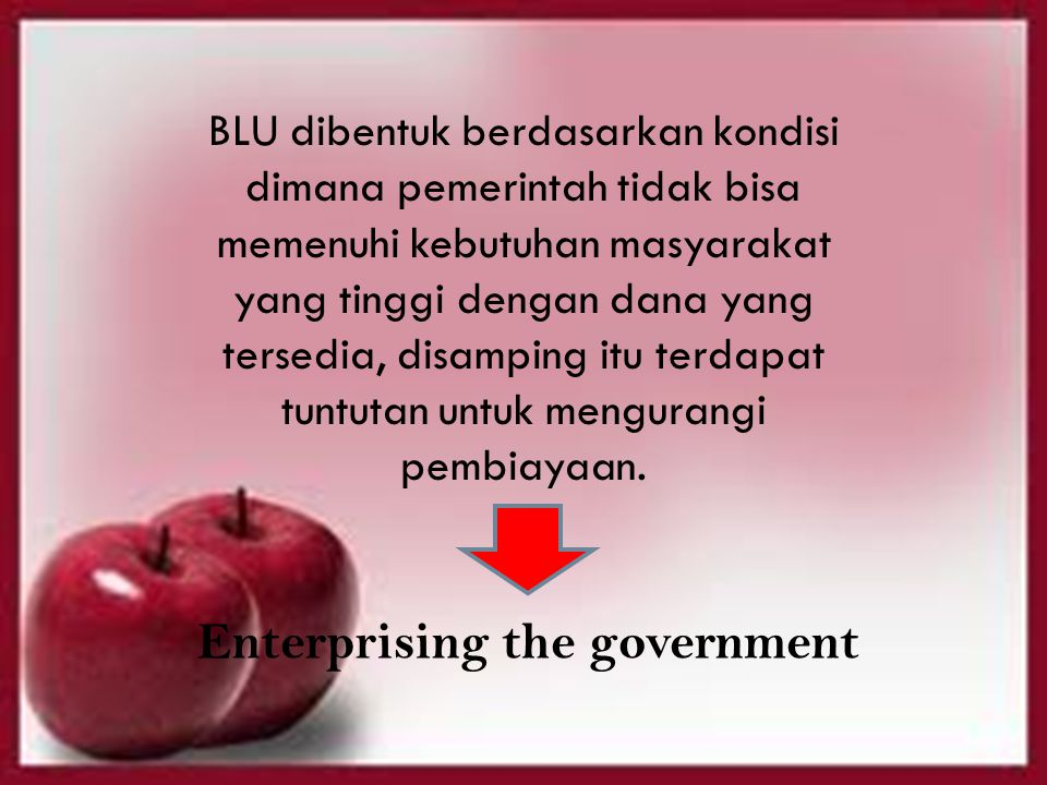 Enterprising the government