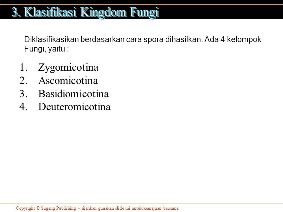 3. Klasifikasi Kingdom Fungi