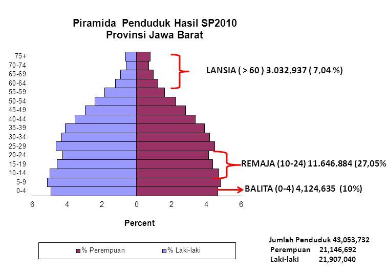 LANSIA ( > 60 ) 3.032,937 ( 7,04 %) REMAJA (10-24) 11.646.884 (27,05%) BALITA (0-4) 4,124,635 (10%)