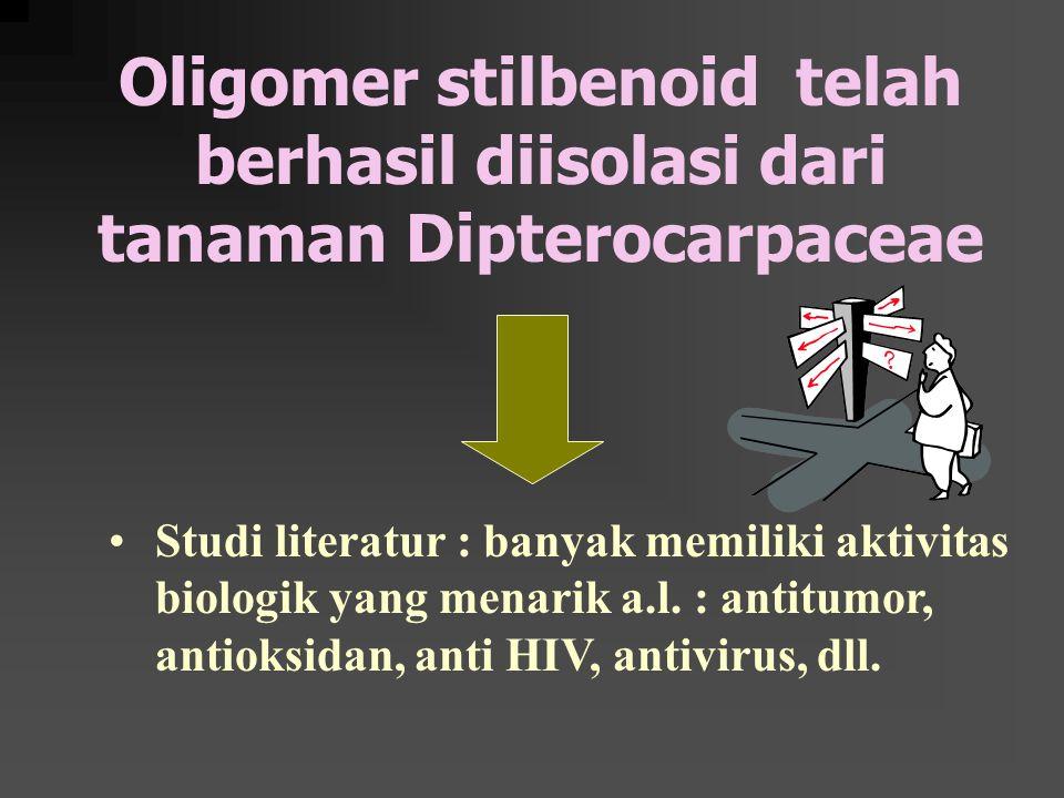 Oligomer stilbenoid telah berhasil diisolasi dari tanaman Dipterocarpaceae