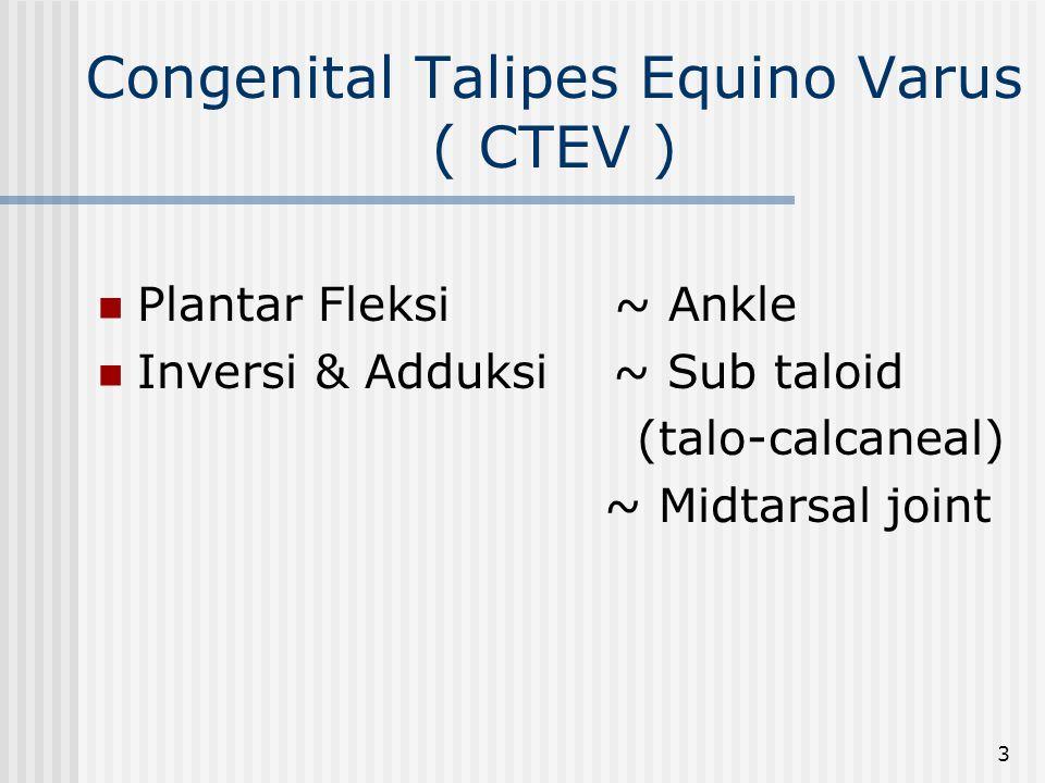 Congenital Talipes Equino Varus ( CTEV )