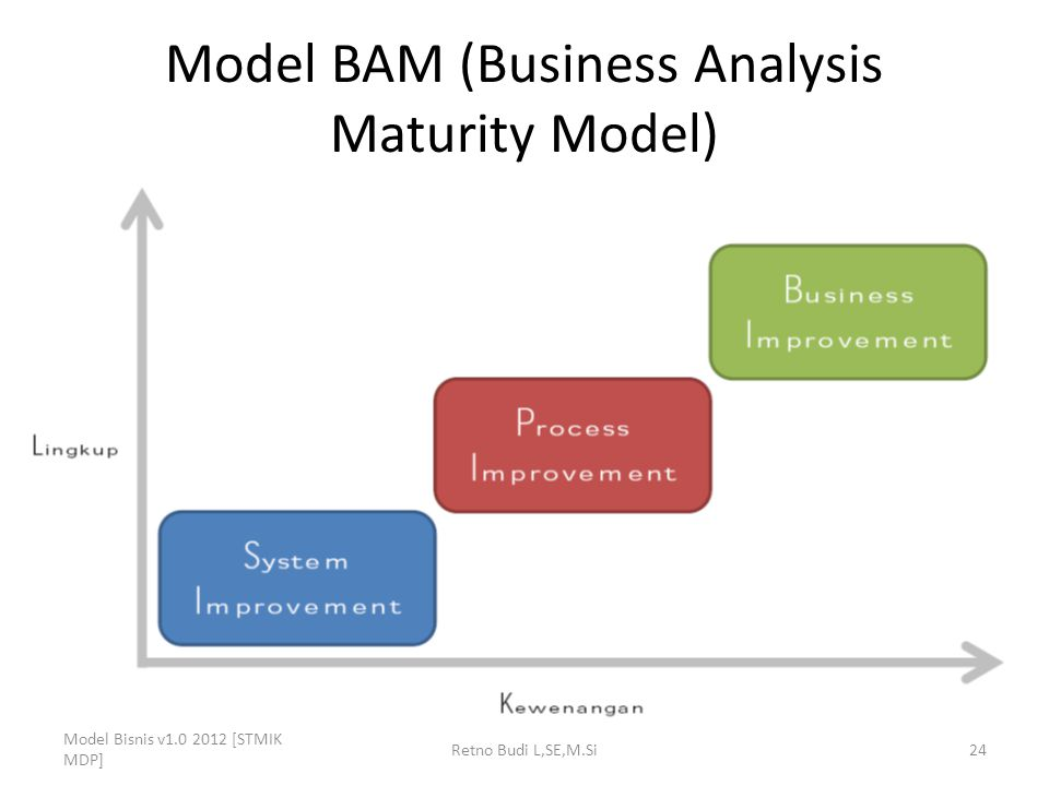Model BAM (Business Analysis Maturity Model)