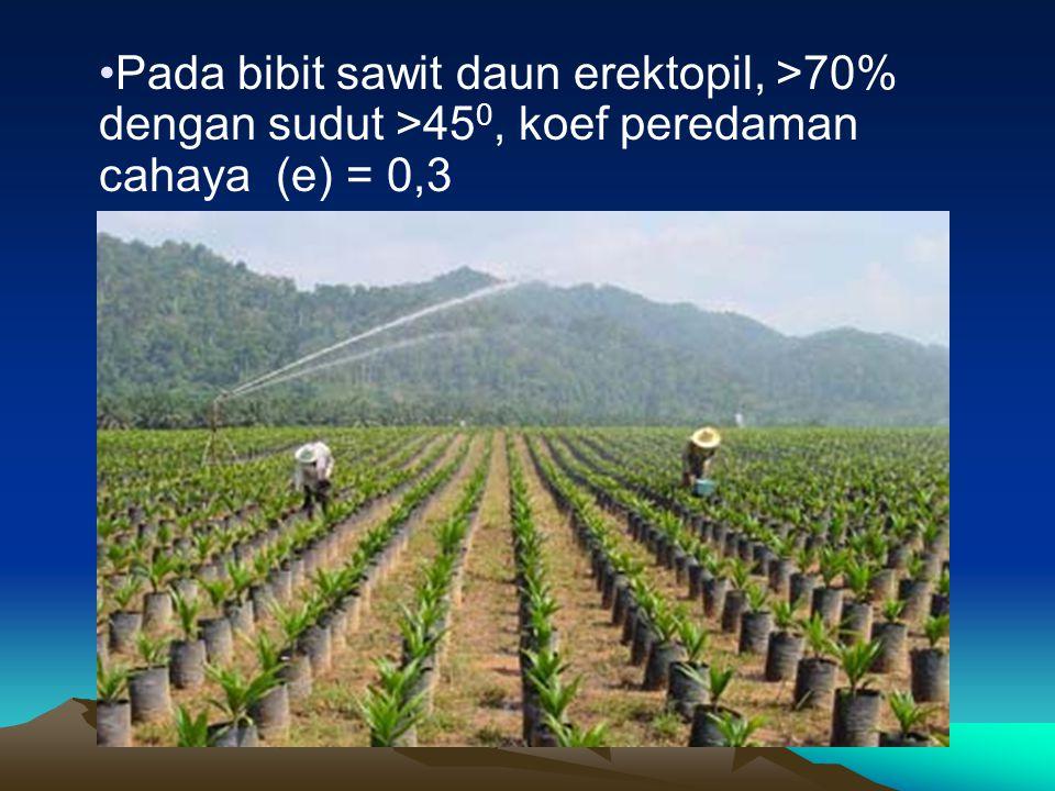 Pada bibit sawit daun erektopil, >70% dengan sudut >450, koef peredaman cahaya (e) = 0,3