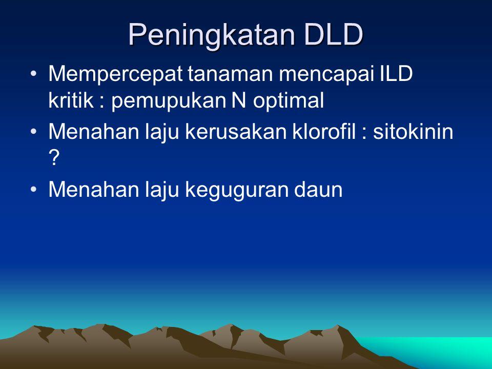 Peningkatan DLD Mempercepat tanaman mencapai ILD kritik : pemupukan N optimal. Menahan laju kerusakan klorofil : sitokinin