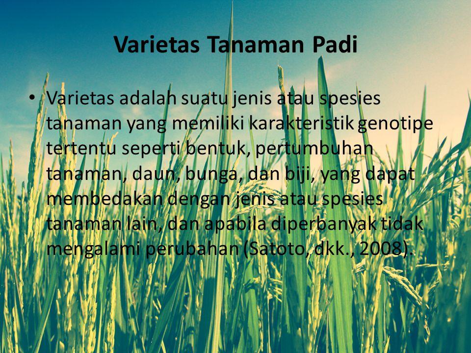 Varietas Tanaman Padi