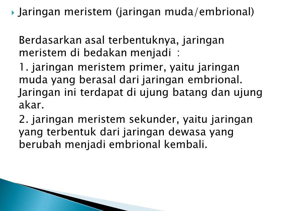 Jaringan meristem (jaringan muda/embrional)