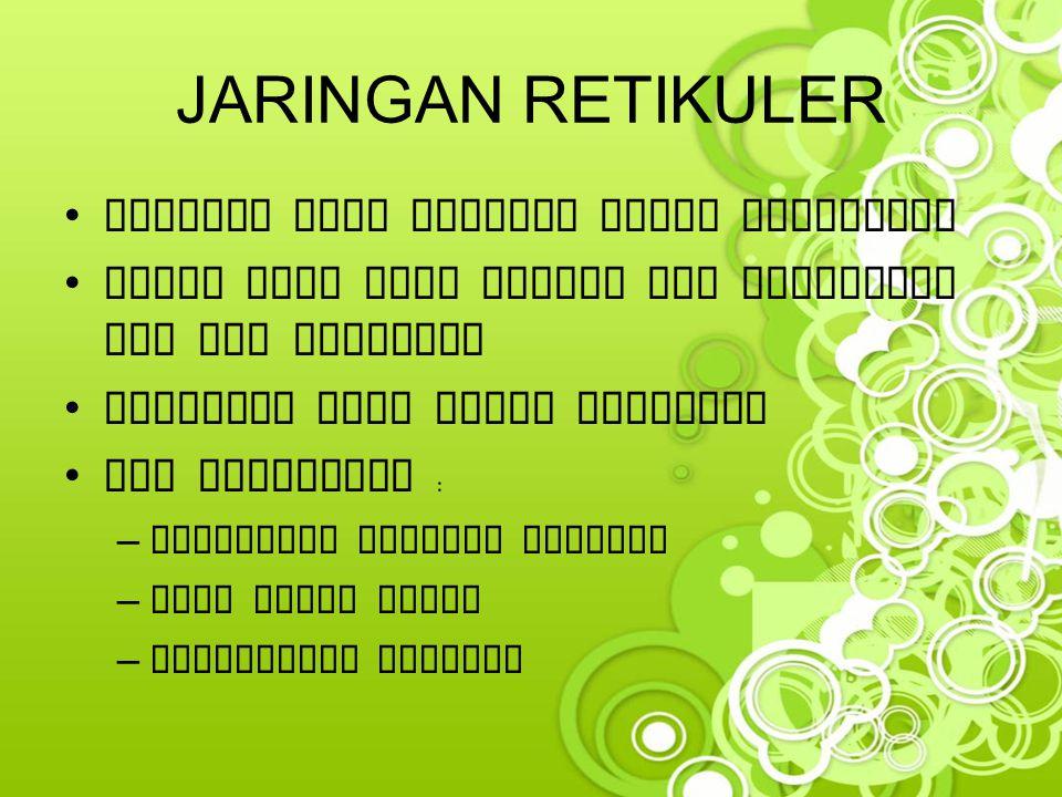 JARINGAN RETIKULER Terdiri dari anyaman sabut retikuler
