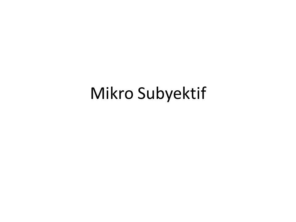 Mikro Subyektif
