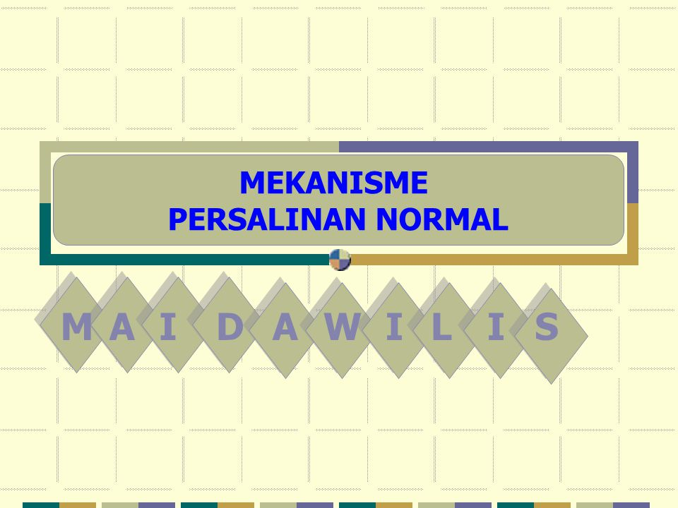 MEKANISME PERSALINAN NORMAL M A I D A W I L I S